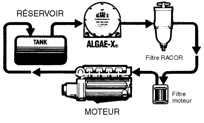 algae x un traitement du gazole pour moteurs diesel entretien le moteur horizon nautique. Black Bedroom Furniture Sets. Home Design Ideas