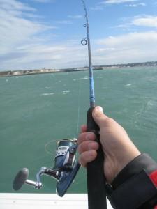 Sortie pêche en mer à Dieppe - 17 juin 2011