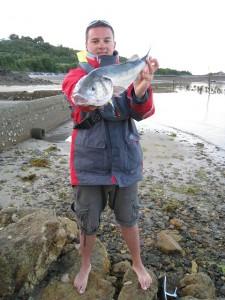 Pêche au bar en drop shot et crabe gulp - Bretagne 2011